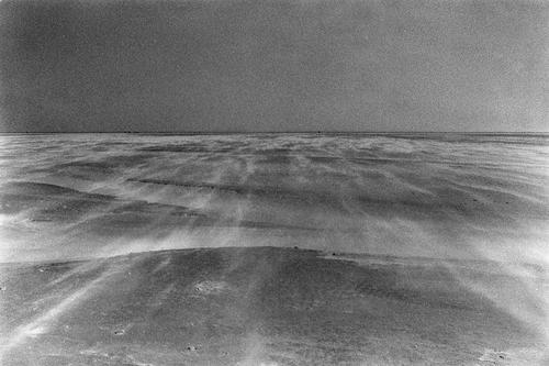 Terra arenicolae marinae